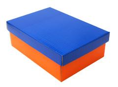 caja botin